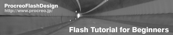 Flash Tutorial for Beginners